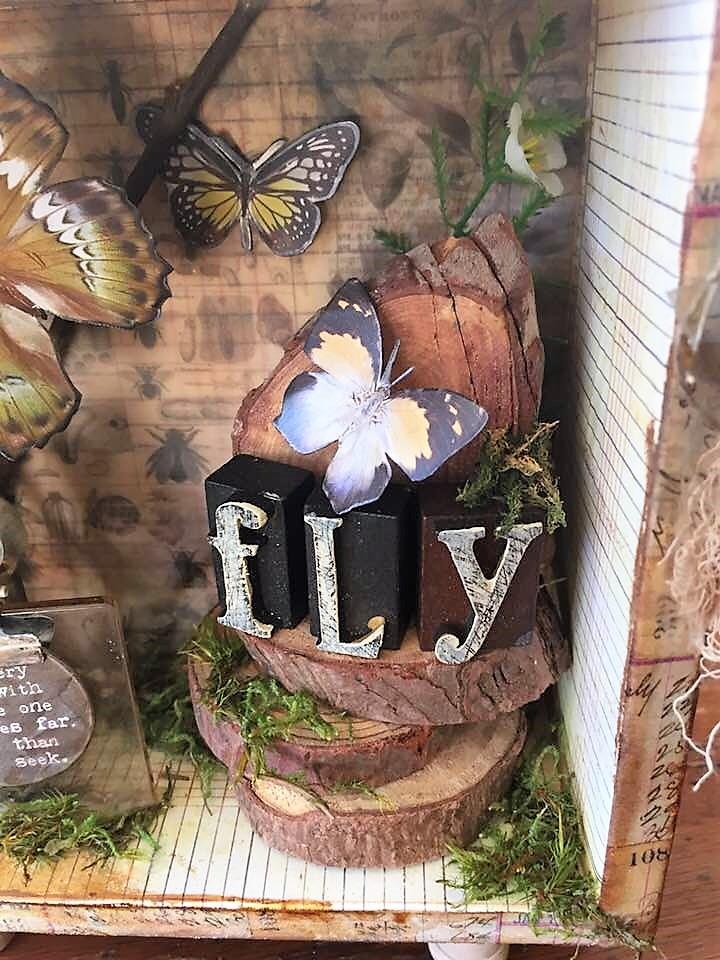 Fly SB (12)